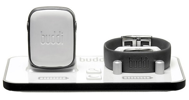 Buddi Medical Alarm Grey